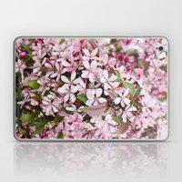 Apricot blossoms Laptop & iPad Skin