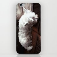 Dog Tired iPhone & iPod Skin