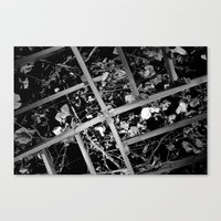 Gazebo Roof  Canvas Print