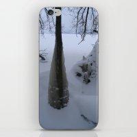 Blanket Of Ice iPhone & iPod Skin