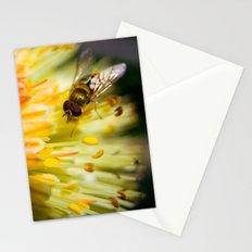 Poking Around Stationery Cards