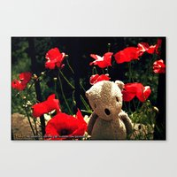 Poppy Palin Canvas Print