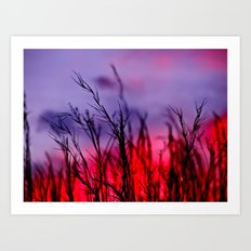 Colors to the West Art Print