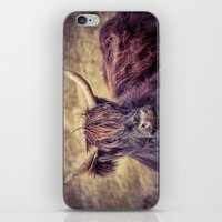 Long Horn Highland Cow iPhone & iPod Skin
