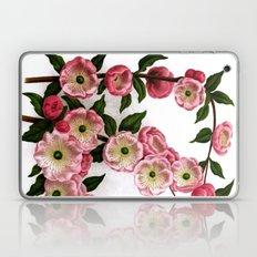 Flowering Almond Pink Floral Laptop & iPad Skin
