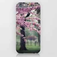 Blossoms For The Road Ah… iPhone 6 Slim Case