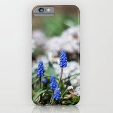 Grape Hyacinth III iPhone 6 Slim Case