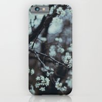 iPhone & iPod Case featuring In Bloom by Taylor Whitehurst
