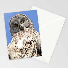 The world seen from above Stationery Cards
