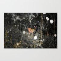 Didi the Deer Canvas Print