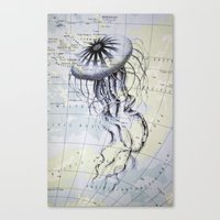 Jellyfish in the South Pacific Canvas Print