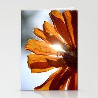 Shine Through  Stationery Cards