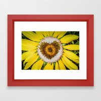 Sunflower Of Love Framed Art Print