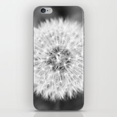 Black & White Dandelion iPhone & iPod Skin