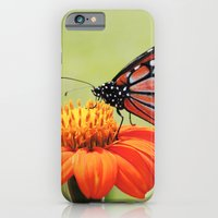 iPhone & iPod Case featuring Orange Flower by Msimioni
