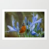 Robin In Flowers Art Print