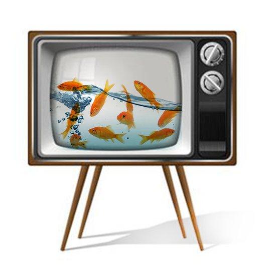 Fish Bowl TV _ 02 Canvas Print