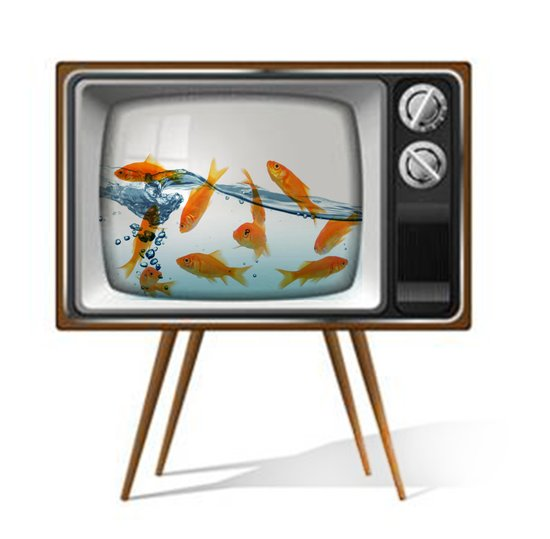 Fish Bowl TV _ 02 Art Print