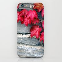 iPhone & iPod Case featuring Fall's Ivy in New England by Jean Ladzinski