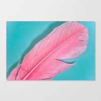PINK FEATHER 2 Canvas Print