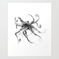 Star Octopus Art Print