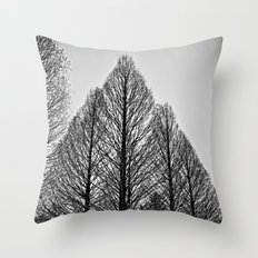 winter session Throw Pillow