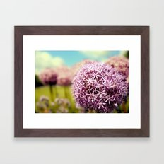 Alliumns Framed Art Print