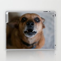 Grizzley Laptop & iPad Skin