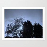 Trees at Sunset Art Print