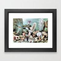 Ocean Life Framed Art Print