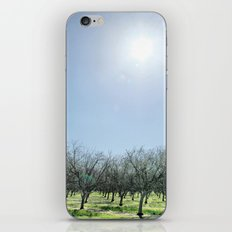 The Barren iPhone & iPod Skin