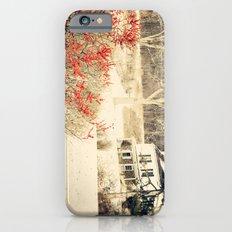 homestead iPhone 6 Slim Case