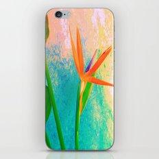 Exotic Flower Love iPhone & iPod Skin