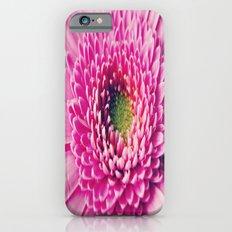 Gerbera Macro iPhone 6 Slim Case