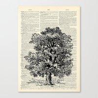 Vintage Oak Tree Canvas Print