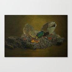 Mallards Having A Meal Canvas Print
