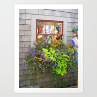 Nantucket Window Box Art Print