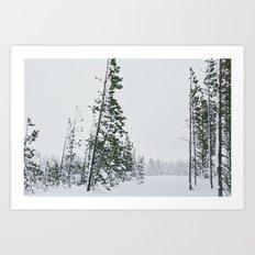 Snowy Silence Art Print
