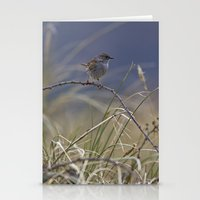 Dunnock Stationery Cards