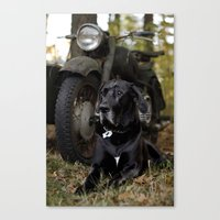 Aging Canvas Print