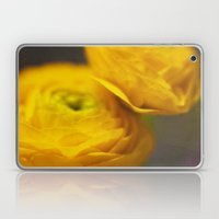 Soft Ranunculus Laptop & iPad Skin