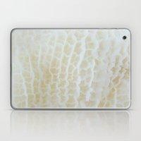 Tripe Laptop & iPad Skin