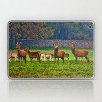 The Young Bucks Laptop & iPad Skin