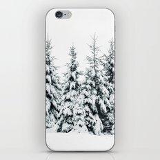 Snow Porn iPhone & iPod Skin