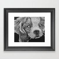 Cavalier Puppy Framed Art Print