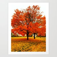 Changing Colors. Art Print