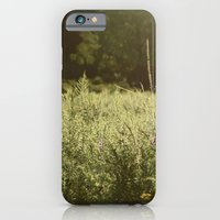 July iPhone 6 Slim Case