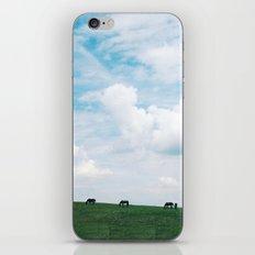 inhale my friend iPhone & iPod Skin