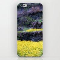 Rape Flowers 2 iPhone & iPod Skin