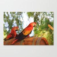 ~Birdy Beauty's~ Canvas Print